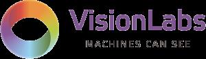 visionlabs-gorizont